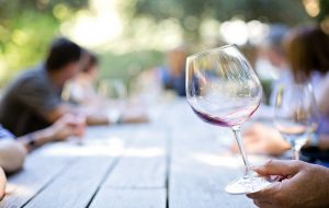 Ultimate Guide To Wine